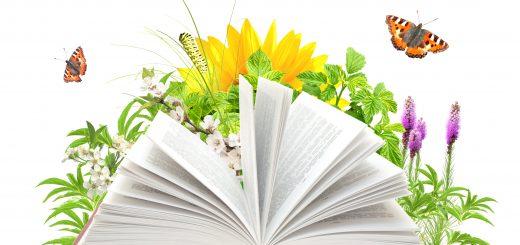 Праздник русской книги «Гармония поэтического слова» в рамках ХI  Международного фестиваля «Великое русское слово»