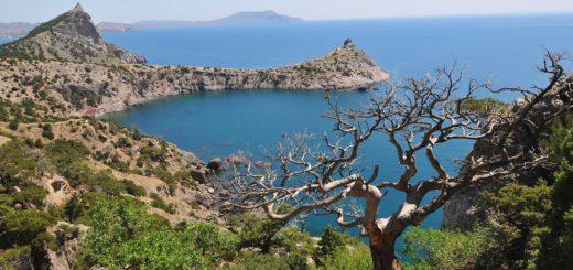 Поэтический флешмоб «Сокровища Крыма»