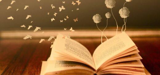 «Я читала и вам рекомендую …»